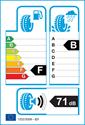 etichetta europea dei pneumatici per Achilles W101 225 45 17