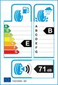 etichetta europea dei pneumatici per Avon WT7 205 55 16
