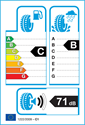 etichetta europea dei pneumatici per BF Goodrich activan winter 215 65 16