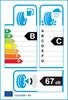 etichetta europea dei pneumatici per Bridgestone Alenza 001 225 60 18 100 H