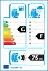 etichetta europea dei pneumatici per Bridgestone Blizzak W810 225 75 16 121 R