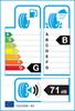 etichetta europea dei pneumatici per Bridgestone Potenza Re050 I 245 45 17 95 Y B G