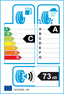 etichetta europea dei pneumatici per Bridgestone T005 255 35 19 96 Y XL