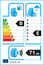 etichetta europea dei pneumatici per comforser Cf950 255 50 19 107 V 3PMSF XL