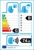 etichetta europea dei pneumatici per Dayton D320 195 55 15 85 H