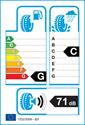 etichetta europea dei pneumatici per Hankook icebear w300 195 55 16