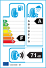 etichetta europea dei pneumatici per nexen N'fera Su1 225 45 18 95 v XL