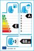 etichetta europea dei pneumatici per Nokian Wetproof 205 55 16 91 W RUNFLAT