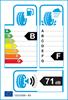etichetta europea dei pneumatici per Viatti V521 Brina 245 45 17 95 T 3PMSF